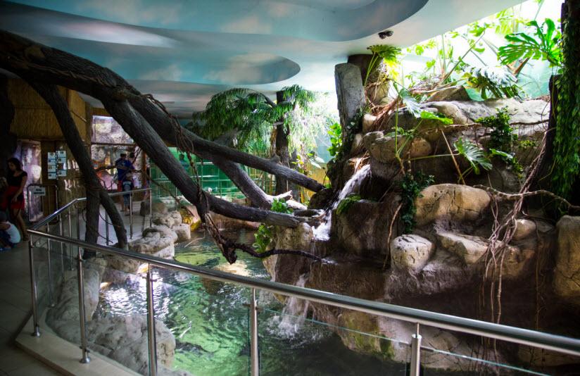 Океанариум-экзотариум «Тропическая Амазонка»