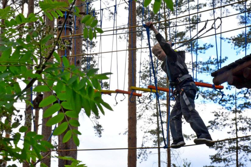 Сеть верёвочных парков «Маугли»