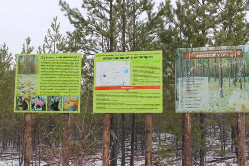 Суйгинский лесопарк