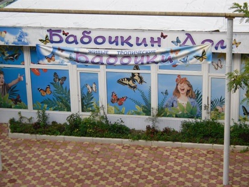 Выставка «Бабочкин дом»