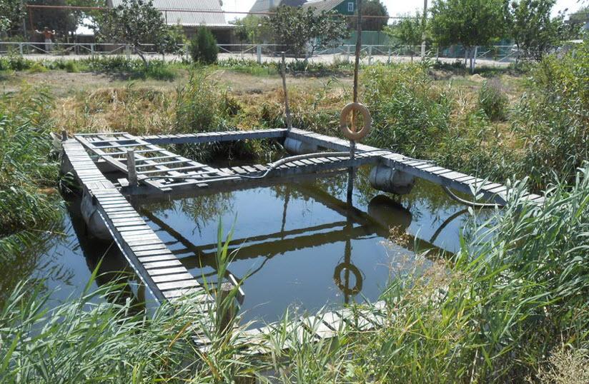 Осетрово-форелевое хозяйство