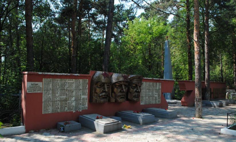 Братское кладбище воинов, умерших в госпиталях