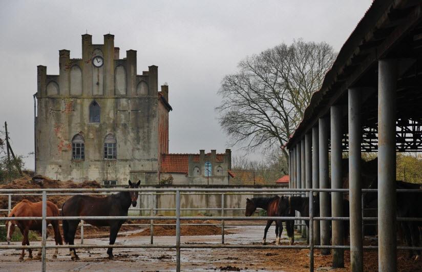 Конный завод «Георгенбург»
