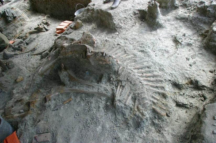 Кундурское месторождение динозавров